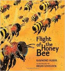 The Flight of the Honey Bee